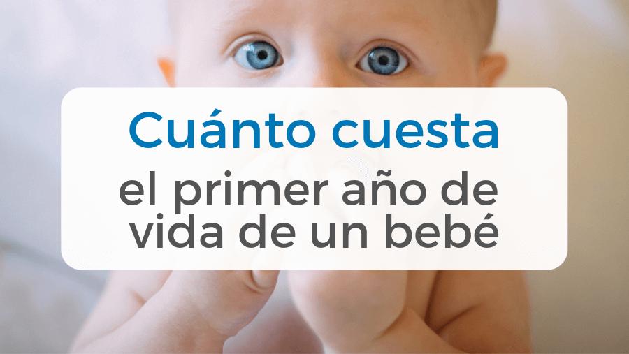 Cuánto cuesta el primer año de vida de un bebé
