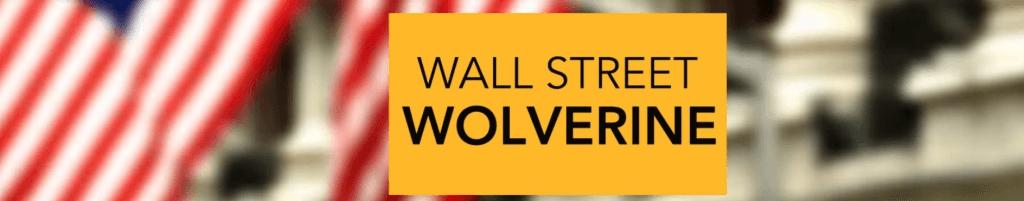 Canal de Youtube de economía de Wall Street Wolverine
