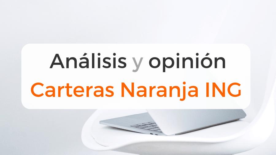 Análisis y opinión de las carteras de inversión naranja plus de ING